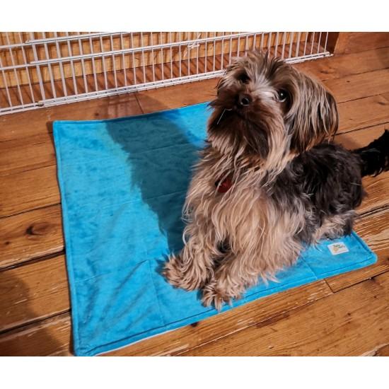Tapis de propreté pour chien (2 formats)