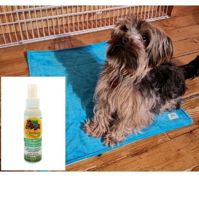 Tapis de propreté de luxe pour chien et chasse-moustique